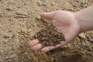 Bodenaufbau