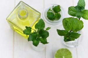 Kosmetik und Körperpflege